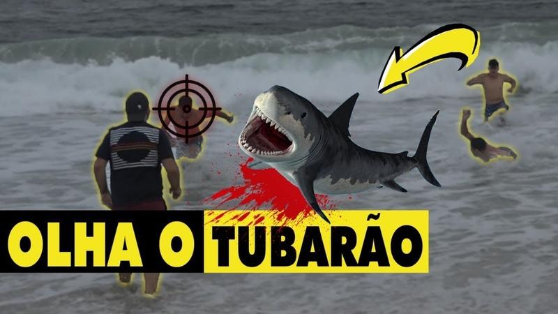 PEGADINHA - OLHA O TUBARÃO! DESAFIO 16 FT. Gerson Albuquerque