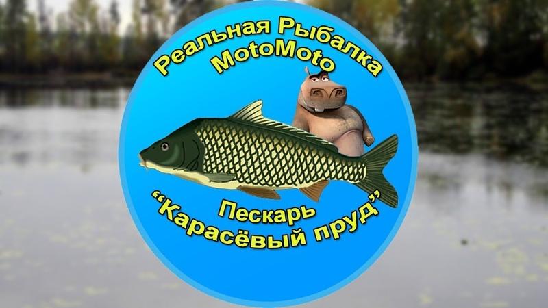 Как поймать Пескаря на Карасёвом пруду Реальная Рыбалка