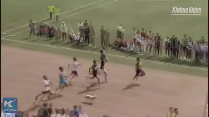 Неожиданный участник забега на 100 метров!