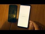 Главное приложение Халява GO на Android