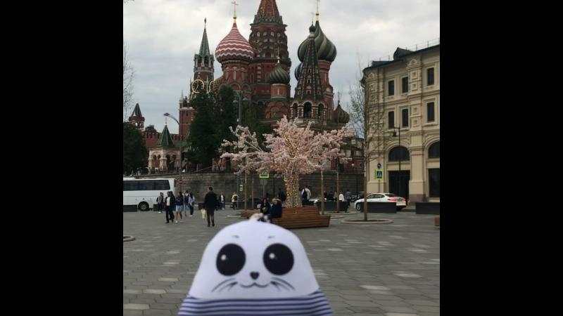 «Москва-звонят колокола.» ⭐️😛(©️Олег Газманов) Москва moscow redsquare краснаяплощадь столица capital