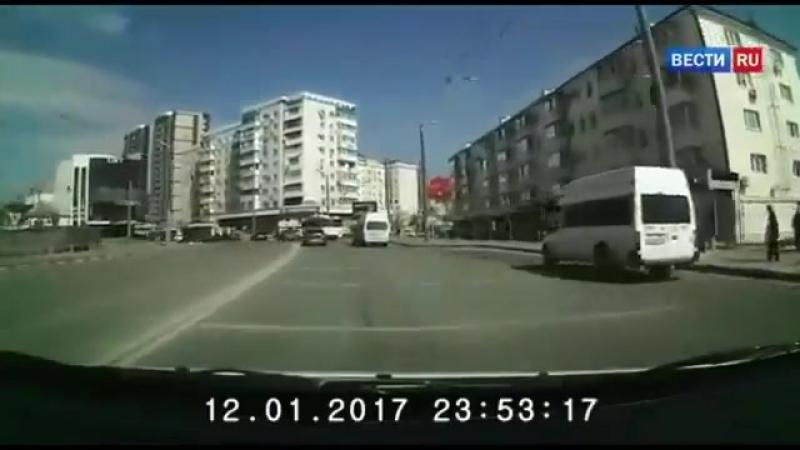 Влетел поздороваться VIDEO ВАРЕНЬЕ