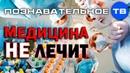 Медицина не лечит Познавательное ТВ, Артём Войтенков