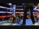 Работа против боксера, лоу и тайский клинч при сближении. Алексей Игнашов - Артур Вильямс