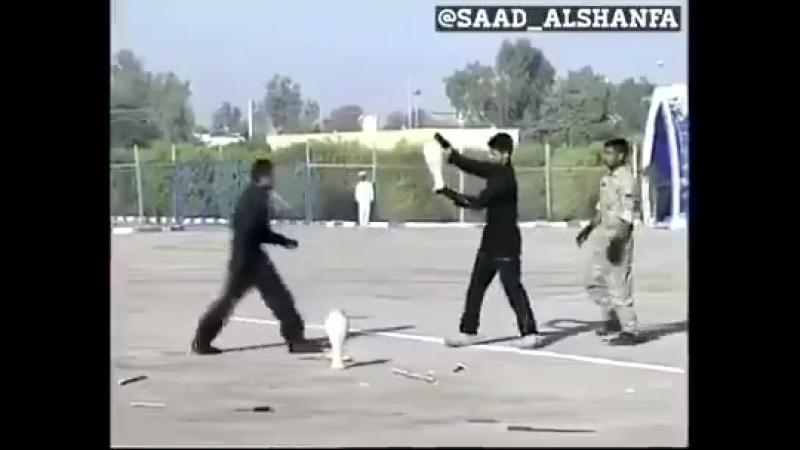 Forces spéciales iraniennes