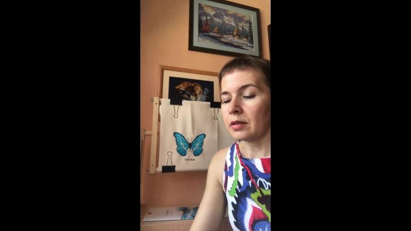 Голубая бабочка фирмы Рукодельные Забавы Окончание