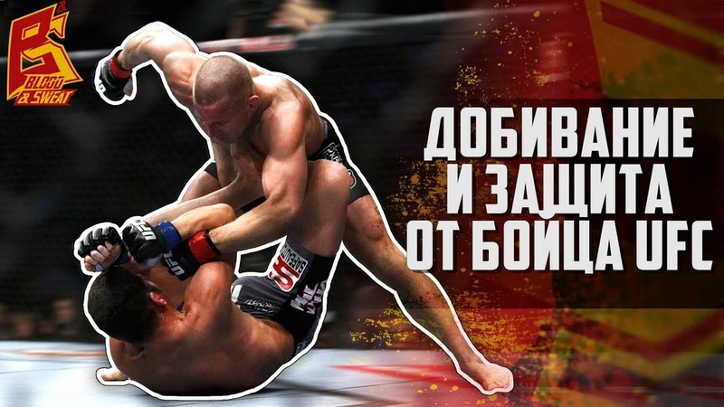 Добивание в партере и защита в ММА от бойца UFC Дави Рамоса lj,bdfybt d gfhntht b pfobnf d vvf jn ,jqwf ufc lfdb hfvjcf