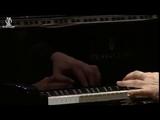 Руки пианиста № 0017 (Элисо Вирсаладзе)