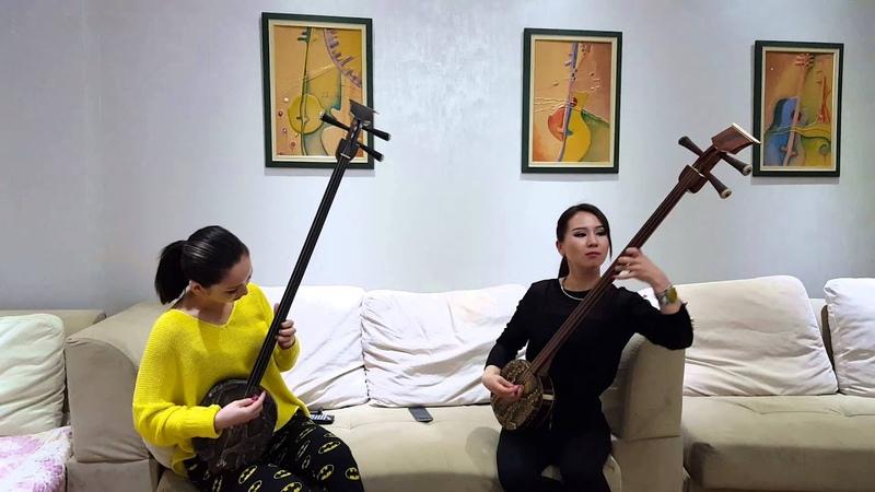 Mongolian traditional musical instrument Shanz