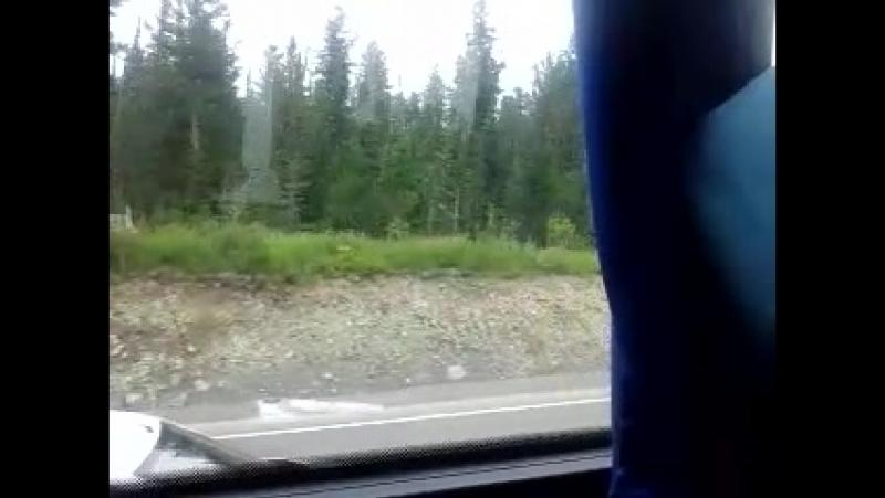 Автобус,Ергаки 2018 3