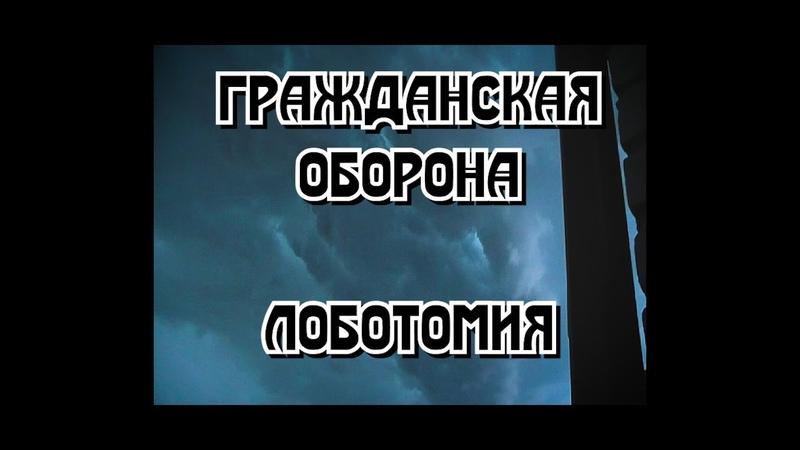 Гражданская Оборона - Лоботомия (cover by skyquake)