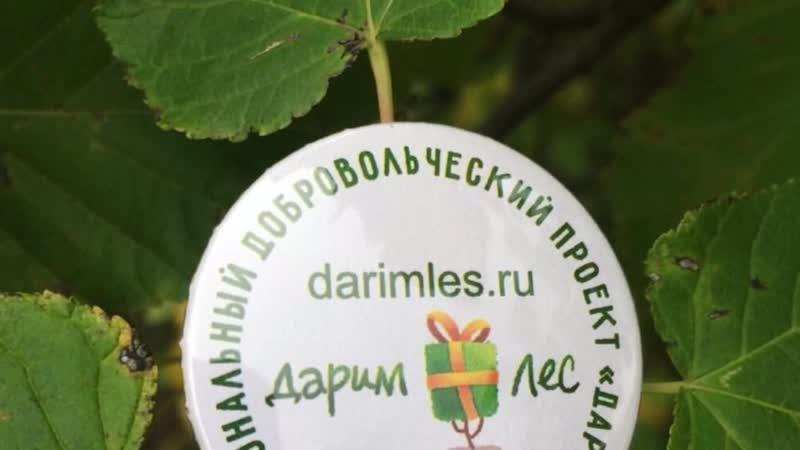 Обращение руководителей международного проекта Дарим Лес - Андрея Доленко и Елены Долговой