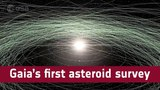 Gaias first asteroid survey