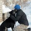Пункт передержки безнадзорных собак в г.Томске