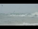 Полёт над морем.....https://www.youtube.com/channel/UC77MiSEk7vi5huUFIh4S7gg
