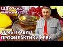 Семь правил профилактики ОРВИ Доктор Комаровский
