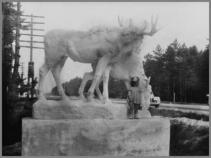 Монинский поворот,1957 год