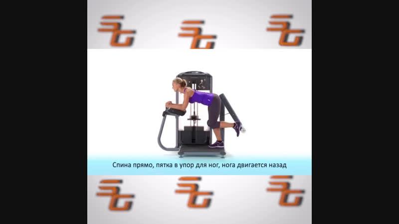 Силовой тренажер Ягодичные мышцы стоя PRECOR DSL618