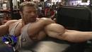 Gunter Schlierkamp - Arms Workout For 2004 Mr.Olympia