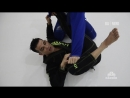 Michael Langhi - Armlock from spider guard техники_за_200