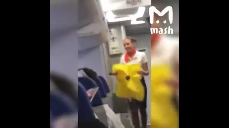 Болельщики сборной Бразилии поддерживают и очень смущают российских стюардесс