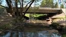 Река Веряжа превратилась в зловонный бурый поток