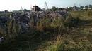 Экологическая катастрофа в МО г Лосино Петовский ул Комсомольская Мусор в водоохранной зоне