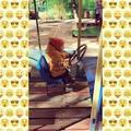 ale_nyshka video