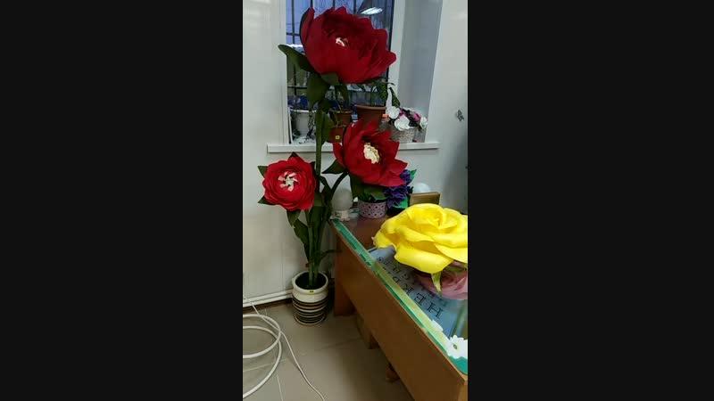 Video_2018_12_10_16_03_53.mp4