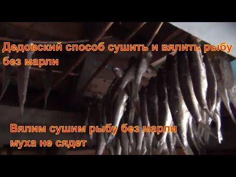 Вялим рыбу по дедовски Муха больше не сядет Как сушить рыбу вялить рыбу без марли