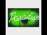 Paradoxe paradise