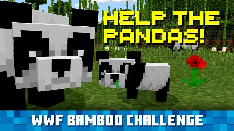 Сажайте Бамбук в Minecraft Помогайте Пандам в Реальной Жизни