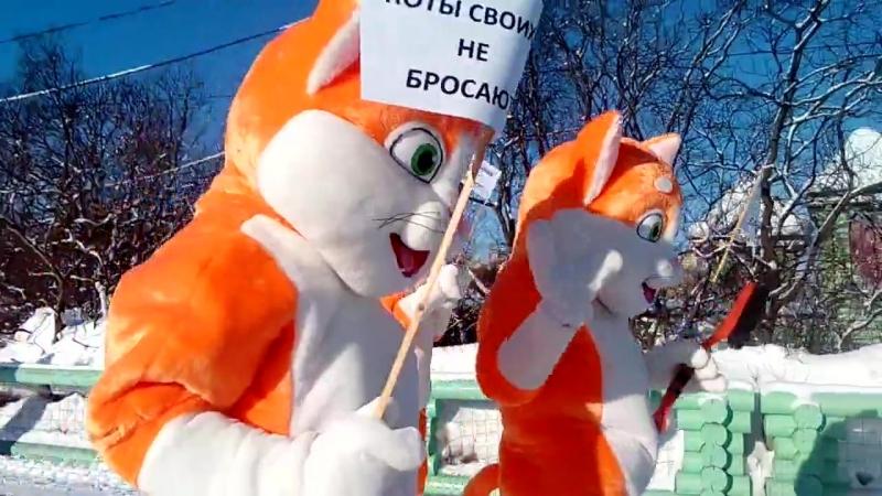 Митинг котов у памятника коту Семена