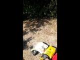 #сидровы #ножки #меркель #природа #тридцать #пять #озеро #остров #после_суток то что #доктор_прописа