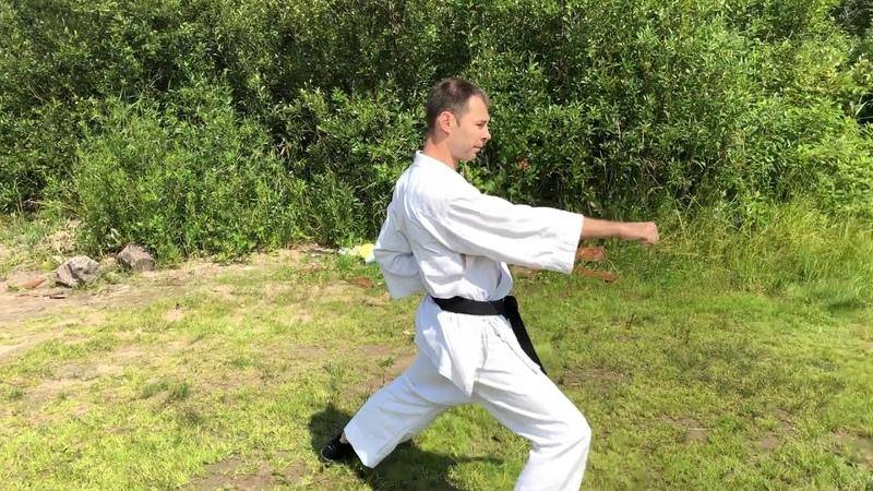 Боевые искусства/Сетокан/шотокан ката Хэйан сандане