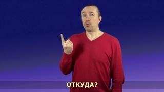 """Раздел """"Вопросы"""". Видеокурс жестового языка """"Давайте знакомиться"""""""