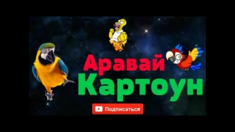 _Пранкота_ Аравай Картоун
