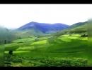 Excursion rapide à travers L'Algérie.