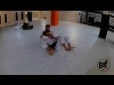 Adam Wardzinski roll with Daud Adaev #bjf_нашилюди #бжж_настроение