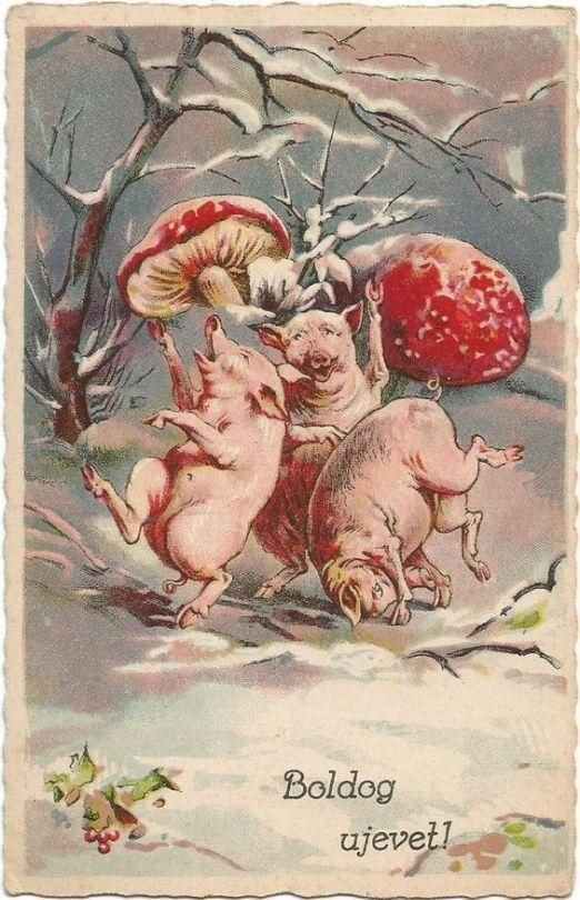 День, новогодние старые открытки год свиньи