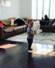 """Daniel Coulter Reynolds on Instagram: """"Gia already learning to use the power of distraction over Coco"""""""