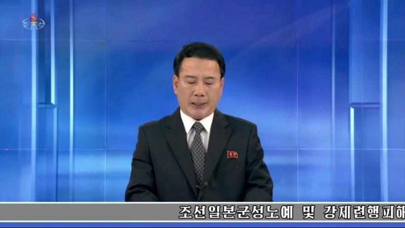 조선일본군성노예 및 강제련행피해자문제대책위원회 대변인담화