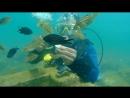 подводные прогулки на черном море