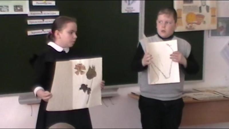 Окружающий мир 4 класс Тема Растениеводство МКОУ Ягоднинская СОШ Белозерского района