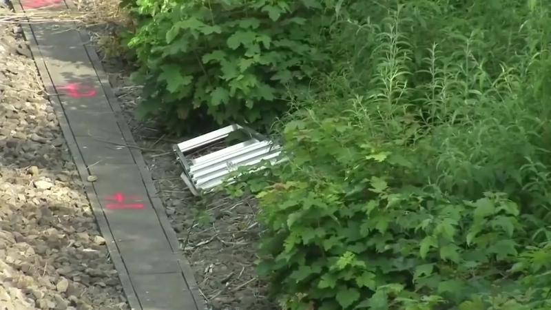 Leichenfund in Wiesbaden-Erbenheim- Vermisste Susanna Maria -14- vermutlich tot - Iraker verhaftet