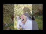 Цветущие яблоневые сады - LOVE STORY