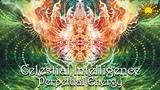 Celestial Intelligence - Constant Motion