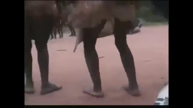[v-s.mobi]Кто не скачет тот москаль Юмор песня Украина Киев майдан ЕС США бандерлоги YouTube.mp4