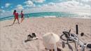 NIGEL SYLVESTER | GO - Miami