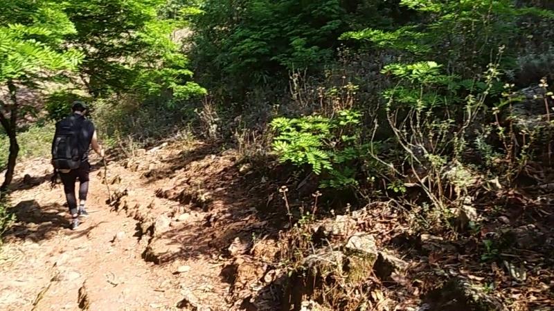 Чайная тропа. Трудна и терниста. сЧаемПоКитаю YunnanTeaTrip2018 ChinaTeaTravel